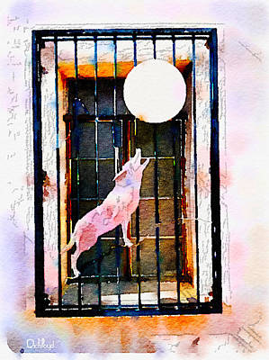 San Xavier Digital Art - San Xavier Window by Rick Lloyd