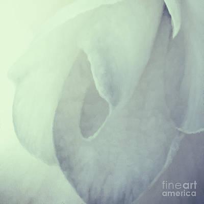 Photograph - Sanctus by Jean OKeeffe Macro Abundance Art