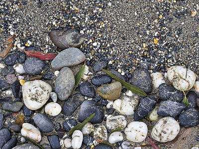 Photograph - Sand And Rocks On Beach by Steven Ralser