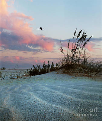 Sand And Sunset Art Print by Deborah Smith