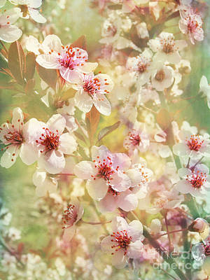 Sand Cherry Flourish Art Print