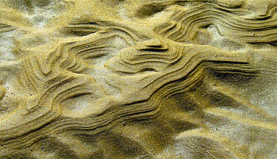 Photograph - Sand Drift by Jocelyn Kahawai
