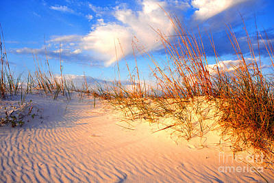 Sand Dune And Sea Oats At Sunset Art Print by Thomas R Fletcher