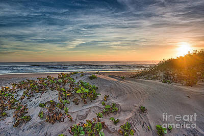 The South Photograph - Sand Dune At Sunrise by Tod and Cynthia Grubbs