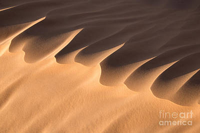 Sahara Photograph - Sand Dune Detail by Delphimages Photo Creations