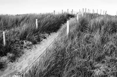 Noirmoutier Photograph - Sand Dune Walkway  by Ronald Steiner