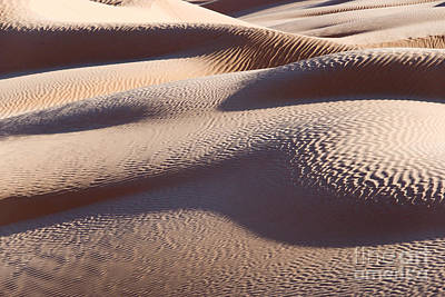 Sahara Photograph - Sand Dunes 1 by Delphimages Photo Creations