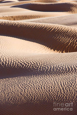 Sahara Photograph - Sand Dunes 2 by Delphimages Photo Creations