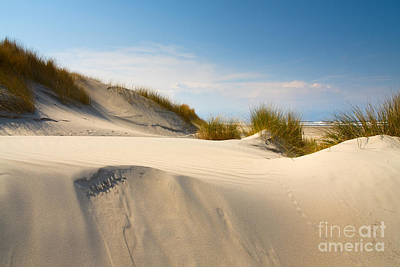 Sand Dunes And Marram Grass. Art Print by Jan Brons