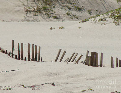 Sand Dunes At Gulf Shores Art Print