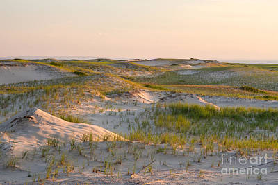 Photograph - Sand Dunes At Race Point Beach by Susan Cole Kelly