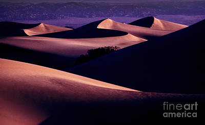 Photograph - Sand Dunes At Sunrise by Paul W Faust -  Impressions of Light