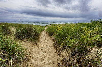 Sand Dunes Beach Path Art Print by Sebastian Musial