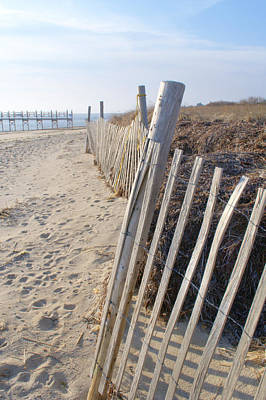 Photograph - Sand Dunes Cape Cod by Caroline Stella
