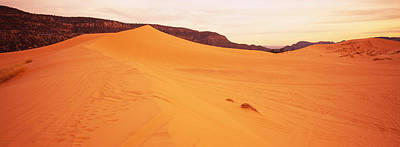 Sand Dunes In A Desert, Coral Pink Sand Art Print by Panoramic Images