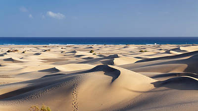 Sahara Sunlight Photograph - Sand Dunes In A Desert, Maspalomas by Panoramic Images