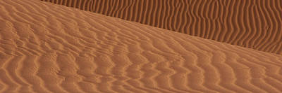 Sand Dunes In A Desert, Mojave Desert Art Print by Panoramic Images
