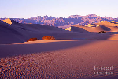 Sand Dunes In Death Valley Art Print