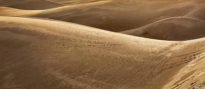 Sahara Photograph - Sand Dunes In Sahara Desert by Wladimir Bulgar