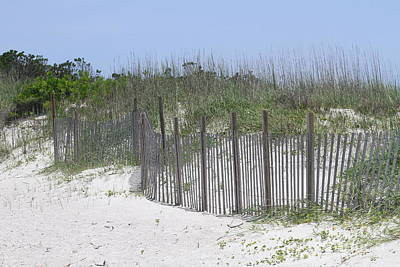 Sand Fence At Cape Lookout Art Print by Cathy Lindsey