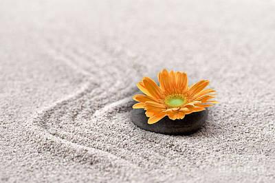 Sand Garden Art Print