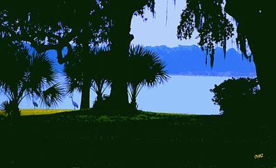 Sand Hill Cranes On Shore Art Print