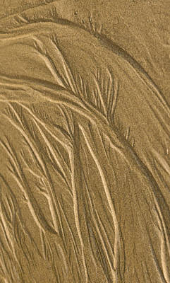 Photograph - Sand Painting2 by Jean Noren