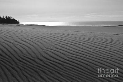 Photograph - Sand Patterns by Adria Trail