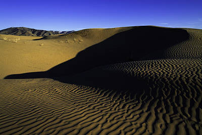 Sahara Photograph - Sand Ripples by Chad Dutson