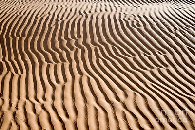 Sahara Photograph - Sand Ripples by Delphimages Photo Creations