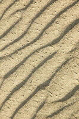 Photograph - Sand Ripples by Rob Huntley