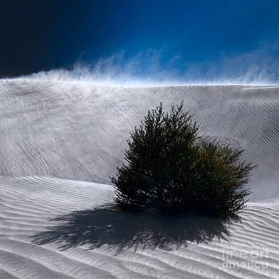 Photograph - Sand Storm by Julian Cook