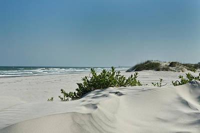 Sand Veggie Art Print