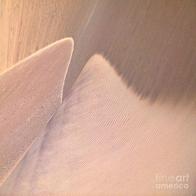 Wall Art - Photograph - Sand Wings by Susie Gillatt