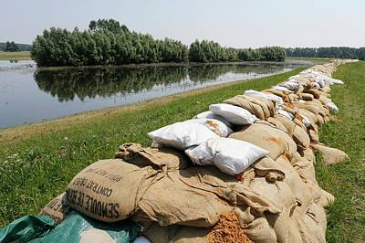 Sandbags On A Dike Print by Michael Szoenyi