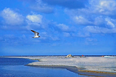 Photograph - Sandbar Bliss by Marie Hicks