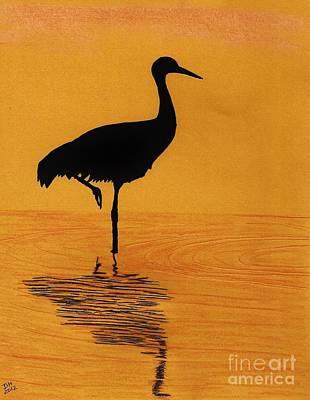 Sandhill - Crane - Sunset Art Print