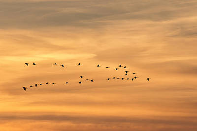 Photograph - Sandhills In The Sunset 1 by Jack R Perry