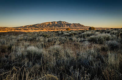 Photograph - Sandia Mountains And Tall Grass At Sunset by Anthony Doudt