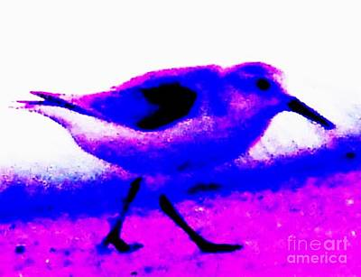 Sandpiper Abstract Art Print by Eric  Schiabor