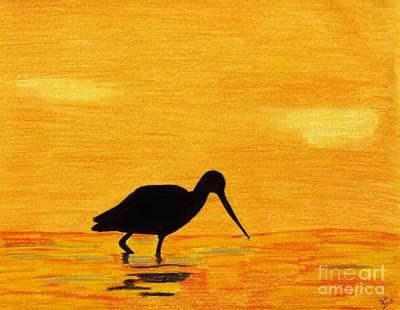 Sandpiper Drawing - Sandpiper - Sunset by D Hackett