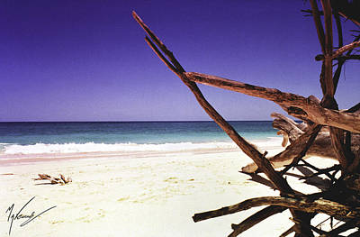Photograph - Sands Of Barbados by Max CALLENDER