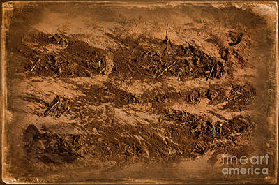 Sands Of Time Art Print by The Stone Age