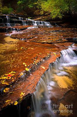 Zion National Park Photograph - Sandstone Cascade by Inge Johnsson