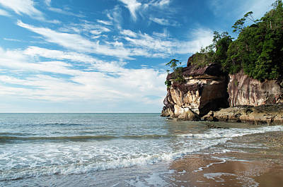 Scenic Photograph - Sandstone Cliffs By Ocean At Telok by Anders Blomqvist