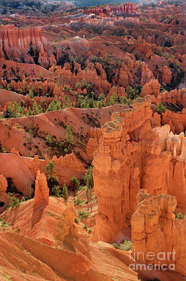 Photograph - Sandstone Hoodoos At Sunrise Bryce Canyon National Park Utah by Dave Welling