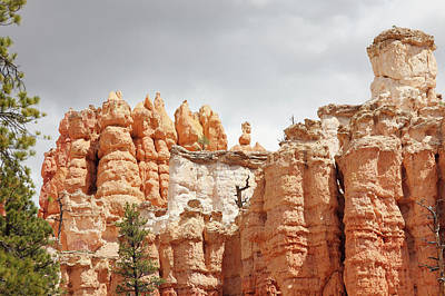 Sandstone Photograph - Sandstone Hoodoos Near Bryce Canyon by Arturbo