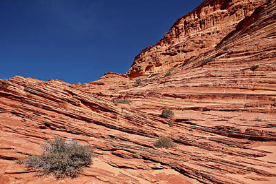 Sandstone Photograph - Sandstone Layers, Vermillion Cliffs by James Hager / Robertharding