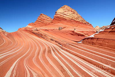 Photograph - Sandstone Swirls by Bill Singleton