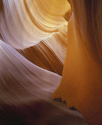 Photograph - Sandstone Vortex by Paul Breitkreuz